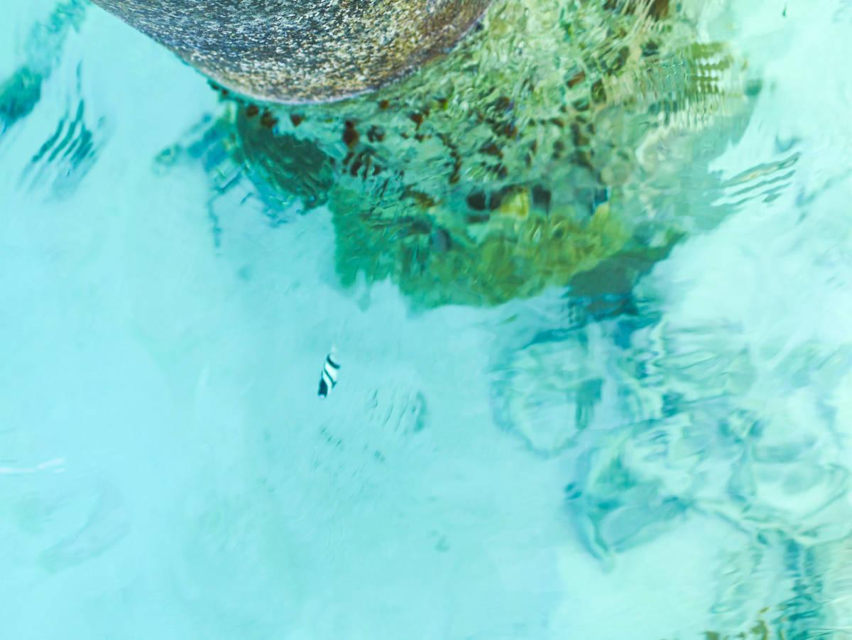Maldives holiday-26