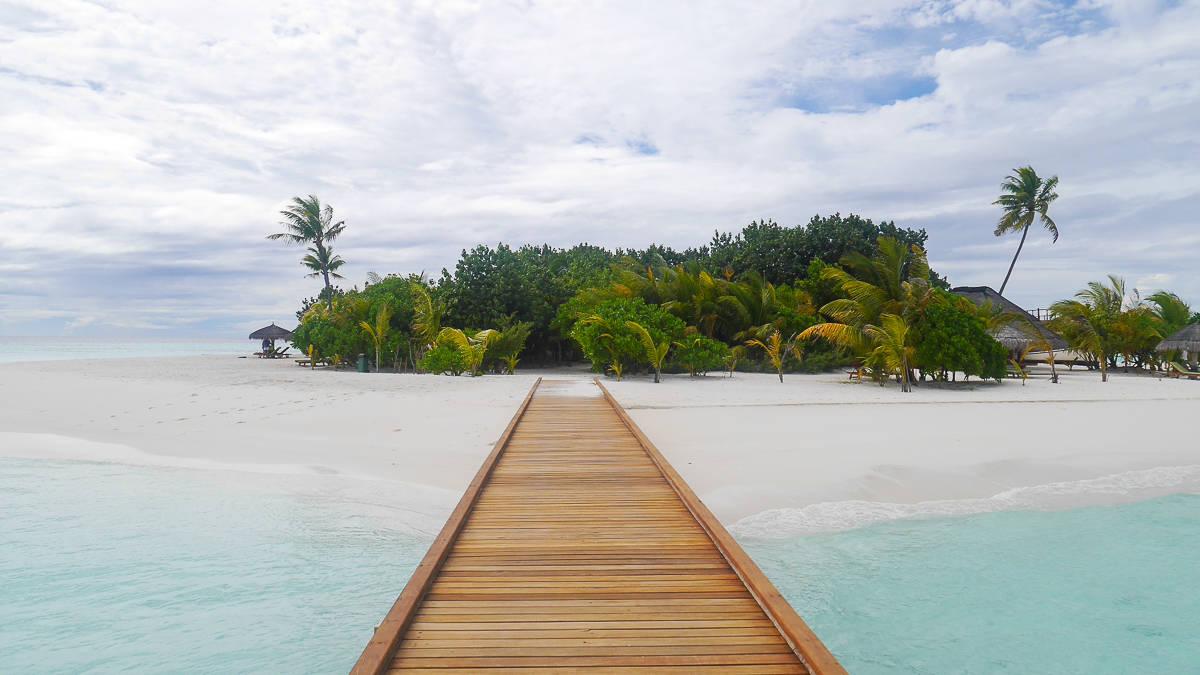 Private island dreaming