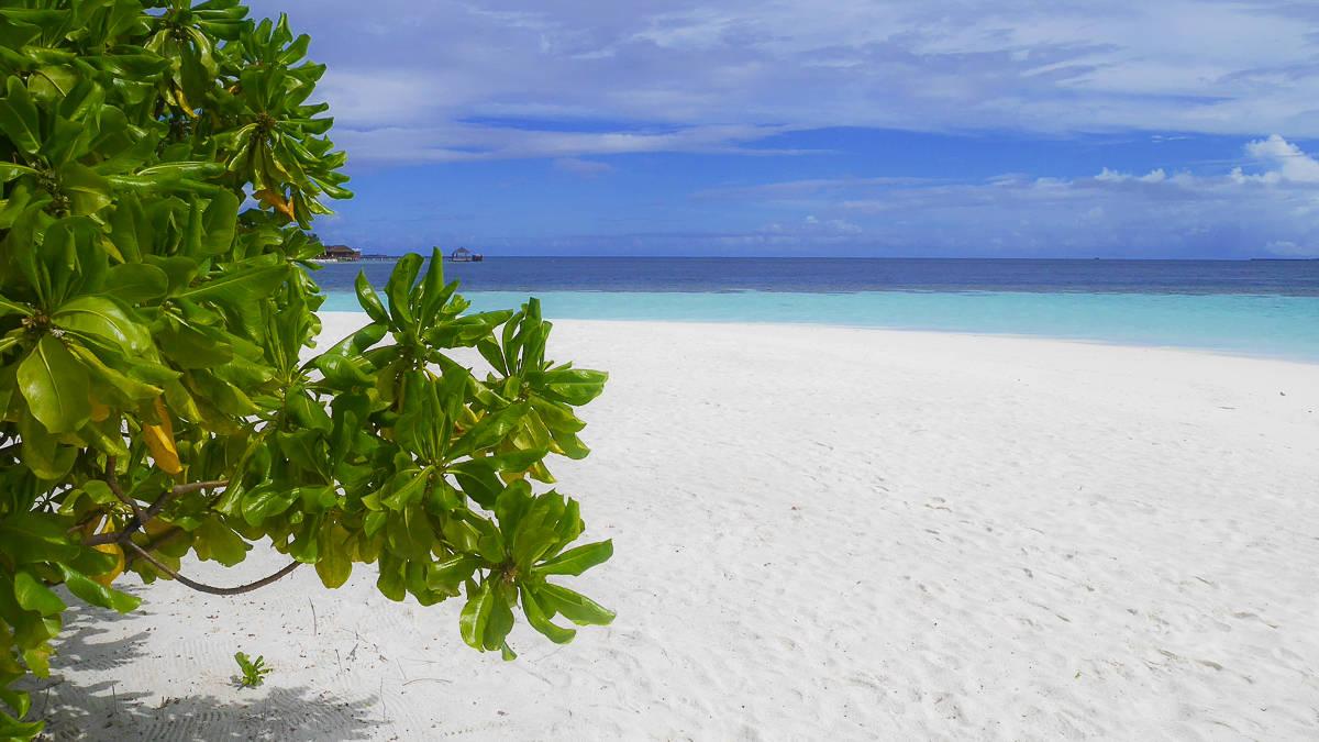 Maldives holiday-76